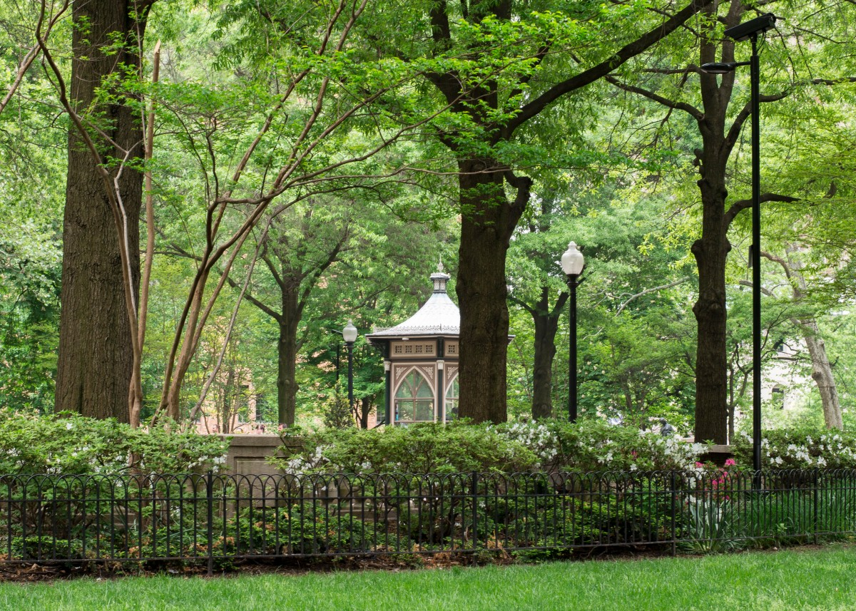 5 chill things to do in RittenhouseSquare